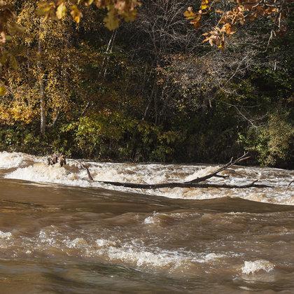 Abava rapids in autumn